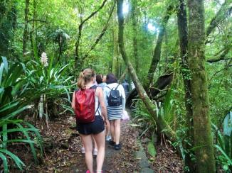 Teen bushwalking